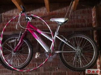 Children's bikes for sale! £50 for one or £80 for two!