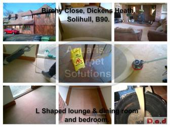 Professional TACCA Approved Carpet Cleaners