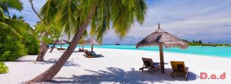 Travel Agents Wanted - Work From Home!!!