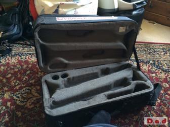 BAM double trumpet case.