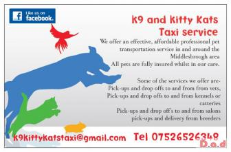 Local and national pet taxi service